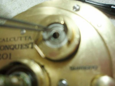 20100206_60.JPG